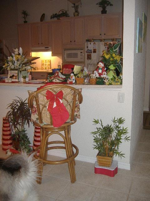 11-23-12Christmas Decorating 049