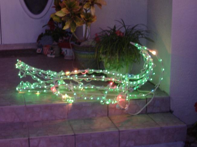 12-1-12 Walka-Alligator lights! 042