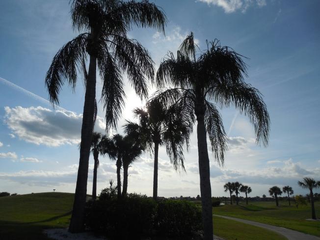 4-27-13 golf course 060