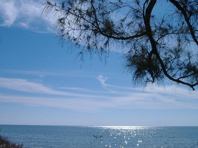 Beach 1-10-12 055