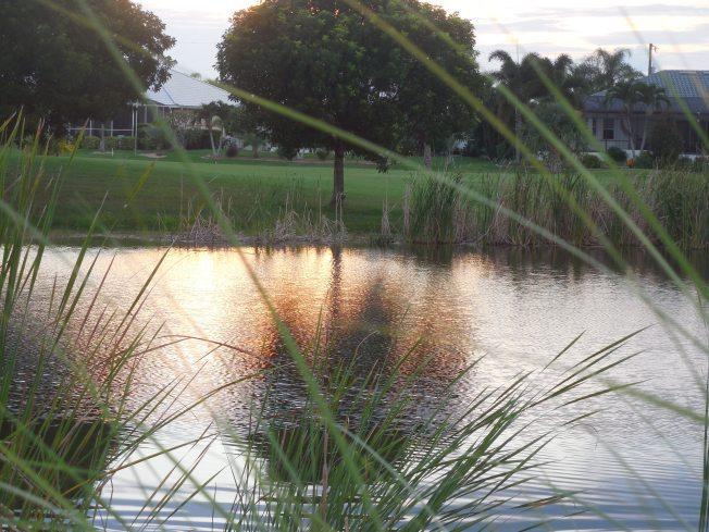 7-28-13 Golf Course 173