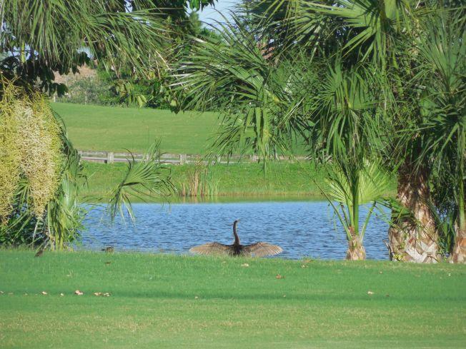 7-7-13 Golf Course 151