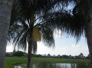 8-11-12 Golf Course 038