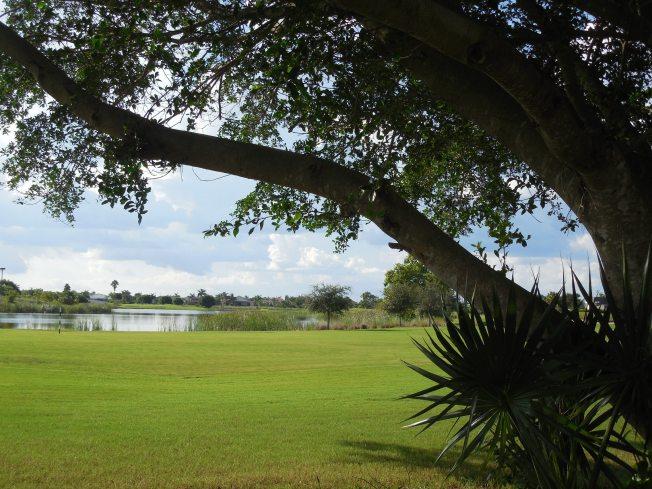 8-24-13 golf course 049