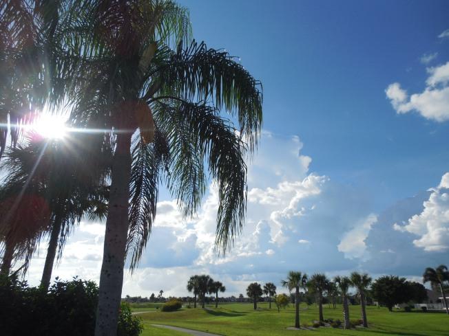 8-24-13 golf course 073