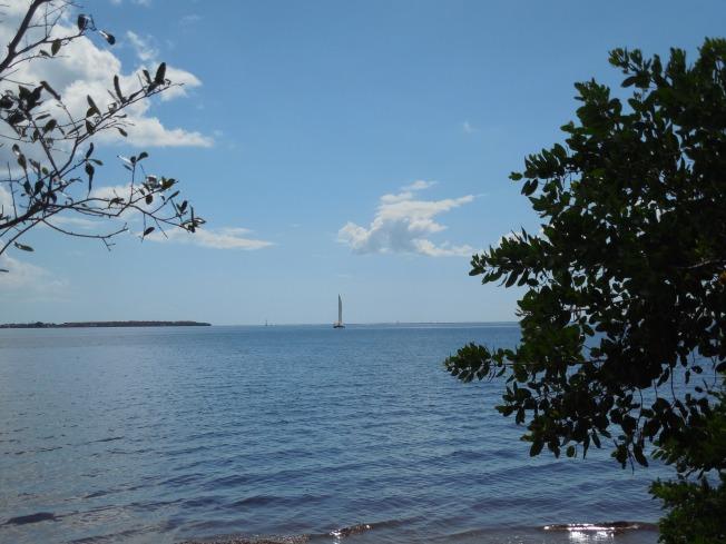 9-29-13 Bayshore Park 099