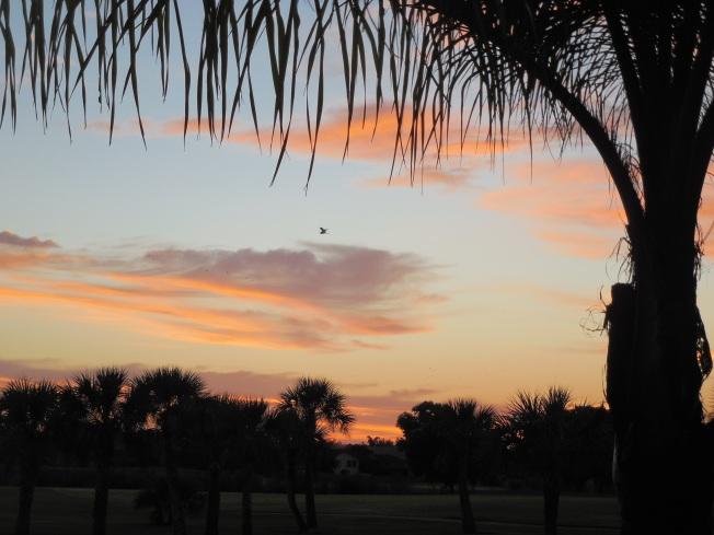 10-4-13 Sunrise 002