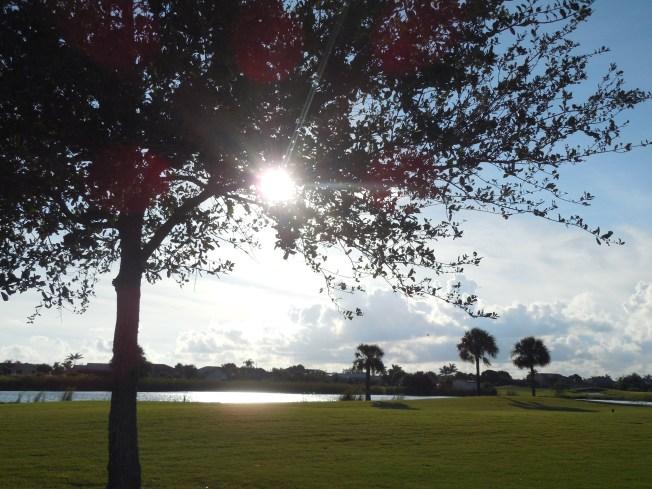 10-22-13 golf course 033