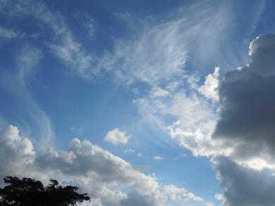 11-23-13 sky-school-practice 042