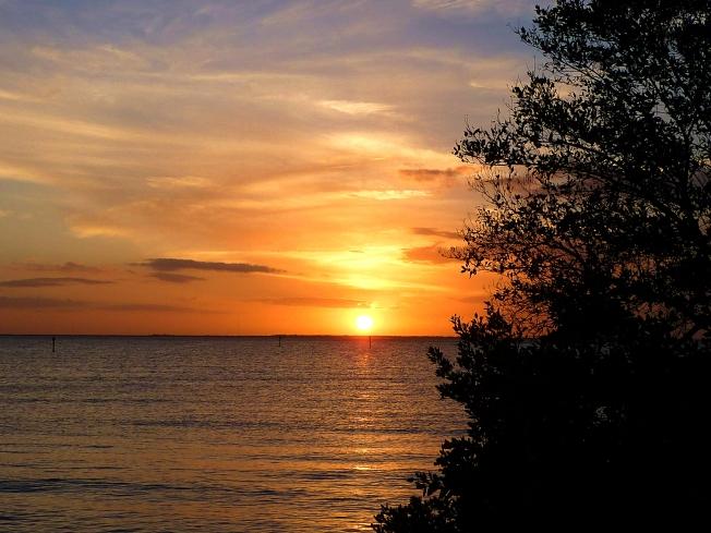 Sunset @ Ponce de Leon Park 11.22.2013 003a