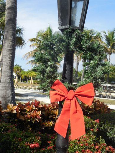12-9-13-Palm Island 225