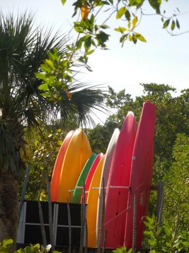 12-9-13-Palm Island 088