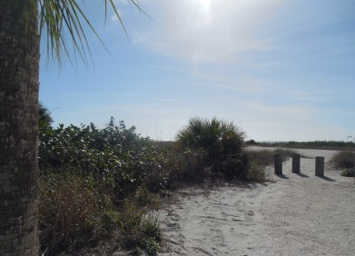 12-9-13-Palm Island 110
