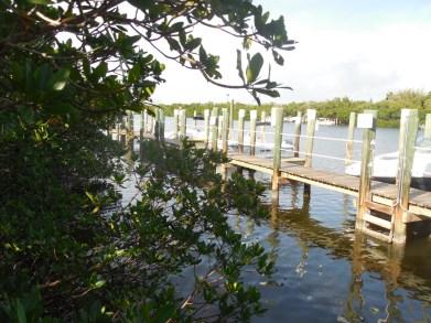 12-9-13-Palm Island 256