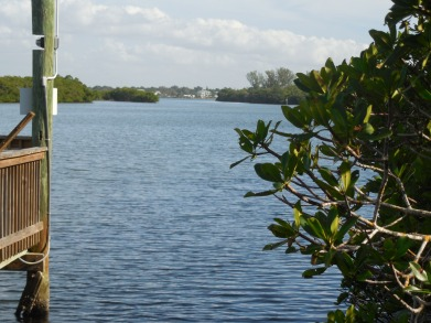 12-9-13-Palm Island 262