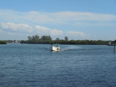 12-9-13-Palm Island 289