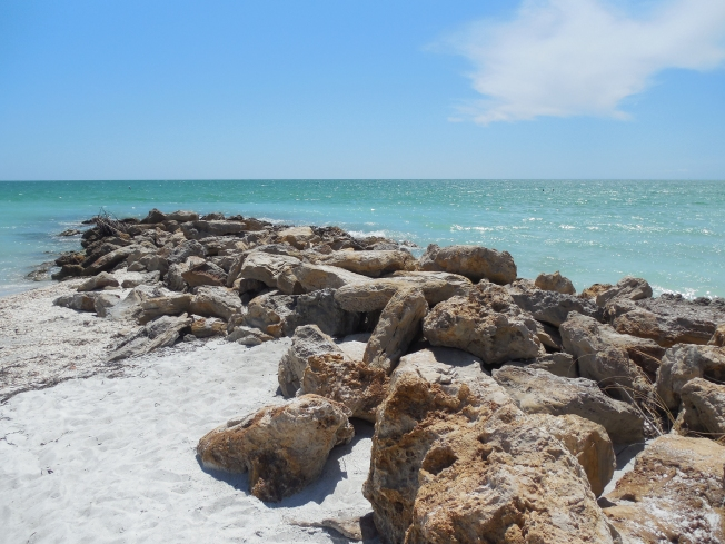 6-12-13 Beach Lido Key 015