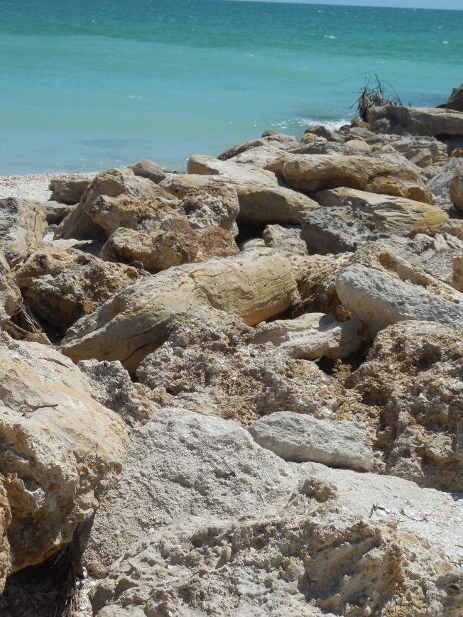 6-12-13 Beach Lido Key 022