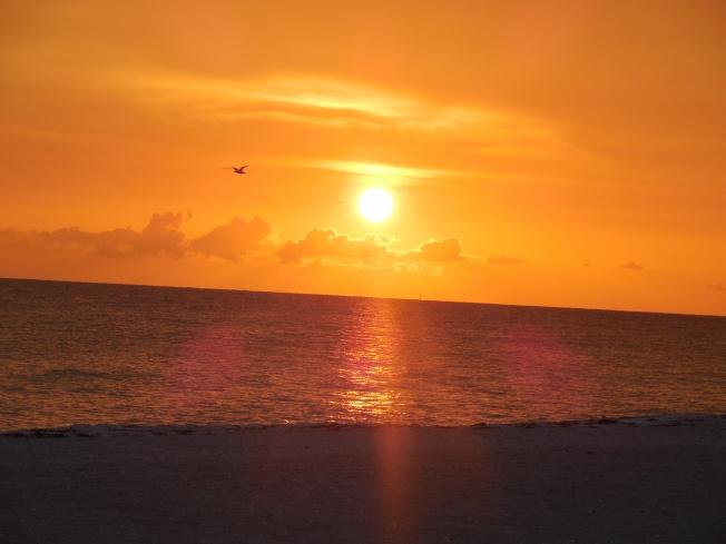 7-7-15 sunset 409